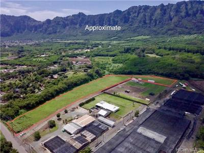 Waimanalo Residential Lots & Land For Sale: 41-240 Hihimanu Street