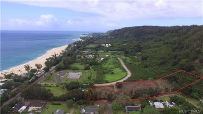 Honolulu County Residential Lots & Land In Escrow Showing: 59-200 Kekiliohulani Street