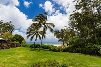 Haleiwa Single Family Home For Sale: 61-489 Kamehameha Highway