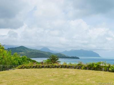 Kaneohe Single Family Home For Sale: 45-219 Haunani Place