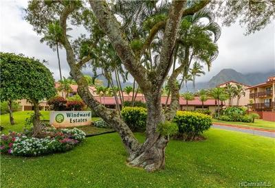 Kaneohe Condo/Townhouse In Escrow Showing: 46-078 Emepela Place #H101