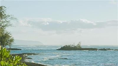 Kahuku Single Family Home In Escrow Showing