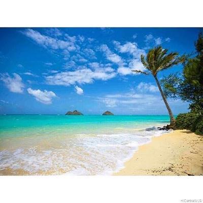 Kailua Single Family Home For Sale: 154 Mahealani Place