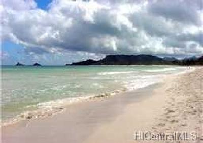 Kailua Rental For Rent: 520-B N Kalaheo Avenue