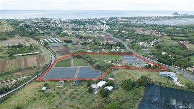 Honolulu County Residential Lots & Land For Sale: 85-755 Waianae Valley Road