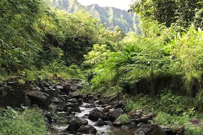 Kaneohe Residential Lots & Land For Sale: 46-403 Haiku Road