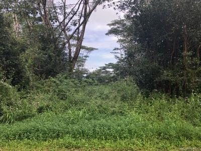 Keaau Residential Lots & Land For Sale: 135 18th Avenue
