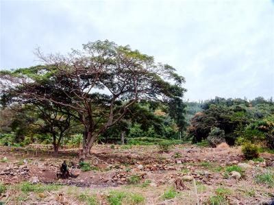 Maui County Residential Lots & Land For Sale: 178 River Road