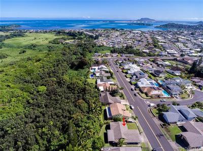 Kaneohe HI Single Family Home For Sale: $1,068,000