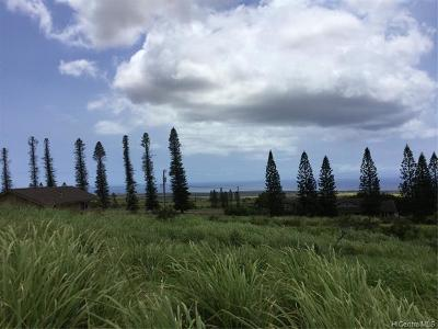 Maui County Residential Lots & Land For Sale: Linohau Place
