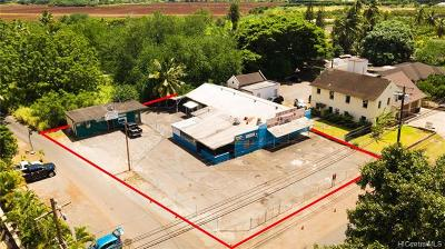 Haleiwa Commercial For Sale: 66-412 Haleiwa Road