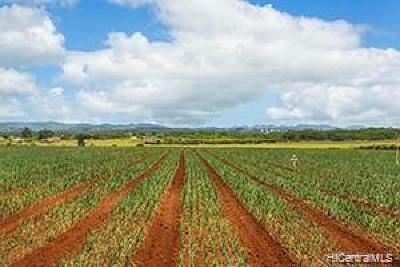Wahiawa Residential Lots & Land For Sale: 64-1550 Kamehameha Highway #Hanua 13