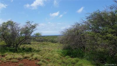 Maui County Residential Lots & Land For Sale: Pa Loa Loop #Lot #4