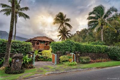 Waimanalo Single Family Home For Sale: 41-1010 Laumilo Street