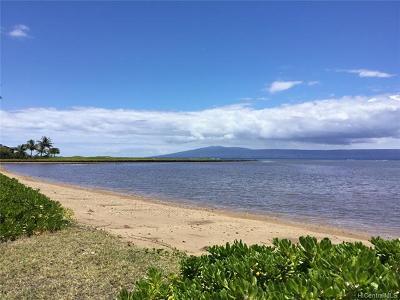 Maui County Single Family Home For Sale: 2270 Kamehameha V Highway