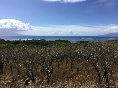 Maui County Residential Lots & Land For Sale: Kamehameha Avenue