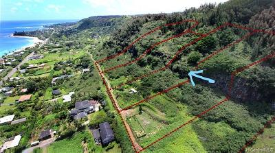 Haleiwa Residential Lots & Land For Sale: 59-178 C5 Kamehameha Highway