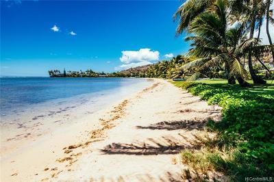 Honolulu Single Family Home For Sale: 256 Paiko Drive