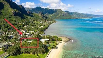 Kaaawa Single Family Home For Sale: 51-519 Kamehameha Highway