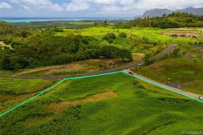 Kailua HI Single Family Home For Sale: $1,275,000