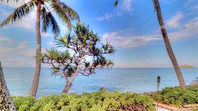 Kailua Single Family Home For Sale: 854 Mokulua Drive