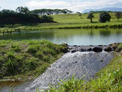 Kauai County Residential Lots & Land For Sale: 9-A Kulana #9A