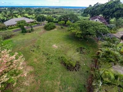 Kauai County Residential Lots & Land For Sale: 2979 Pua Alani Pl.
