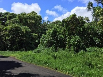 Residential Lots & Land For Sale: Kapoho Kalapana Rd