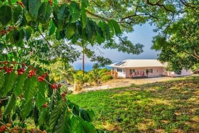 Kailua-Kona Single Family Home For Sale: 78-1100 Kahoolele St