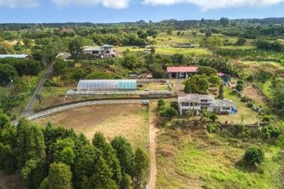 Kealakekua Single Family Home For Sale: 79-7419-E Hawaii Belt Rd