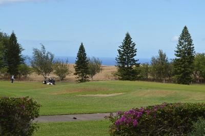 Waikoloa Condo For Sale: 68-1754 Melia St #A101
