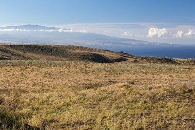Kohala Ranch Residential Lots & Land For Sale: Maluhi Place