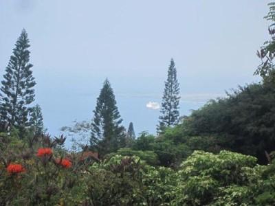 Kailua-kona Single Family Home For Sale: 78-7047 Walua Rd