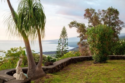 Captain Cook Single Family Home For Sale: 87-2859 Mamalahoa Highway #1