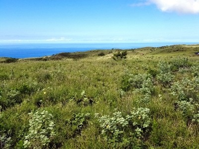 Hawi, Kapaau Residential Lots & Land For Sale: 391 Ka Nani Dr #LOT 391