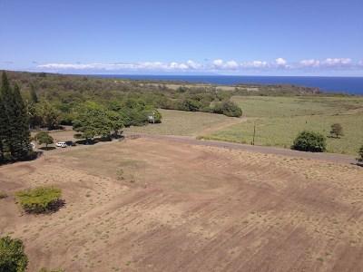 Hawi, Kapaau Residential Lots & Land For Sale: Akoni Pule Hwy
