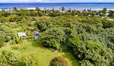 Hanalei Single Family Home For Sale: 7143 Alamihi Rd
