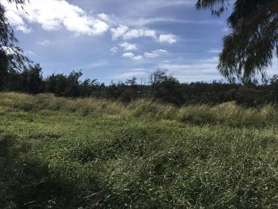 Hawi, Kapaau Residential Lots & Land For Sale: 55-199-B Hoea Road #2