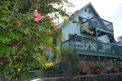 Kailua-Kona Single Family Home For Sale: 73-1066-A Ahikawa St #B
