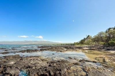 Waimea, Kamuela Single Family Home For Sale: 69-1809 Puako Beach Dr