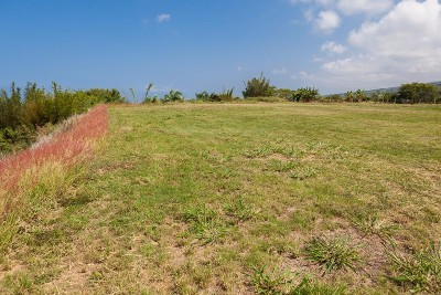 Kailua-Kona Residential Lots & Land For Sale: 75-671-B Pu Hoaloha Pl