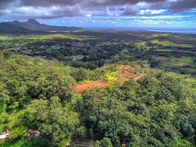 Kauai County Residential Lots & Land For Sale: Uha Rd #5