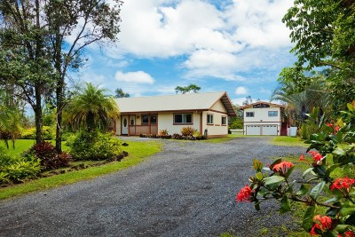 Hilo Single Family Home For Sale: 923 Kukuau St