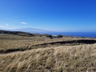 Hawi, Kapaau Residential Lots & Land For Sale: Lehiwa St