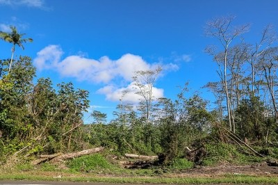 Residential Lots & Land For Sale: Pahoa-Kapoho Rd