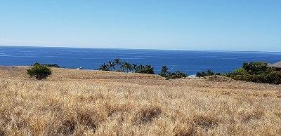 Kohala By The Sea Residential Lots & Land For Sale: 59-114 Honukai Place