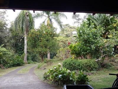 Holualoa Single Family Home For Sale: 78-7047 Mana Opelu Ln