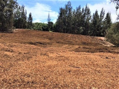 Kamuela HI Residential Lots & Land For Sale: $349,000
