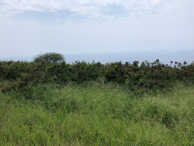 Hawaii County Residential Lots & Land For Sale: 81-467 Keehau St
