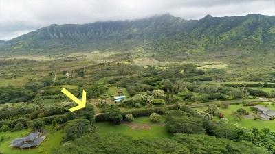 Kauai County Residential Lots & Land For Sale: 2736 Halaulani Rd